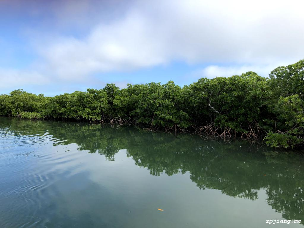 Peace water in Biscayne National Park