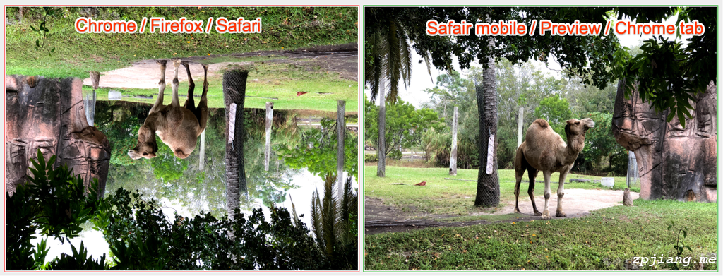 The side by side comparison of different image rotations.
