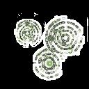 Conari icon