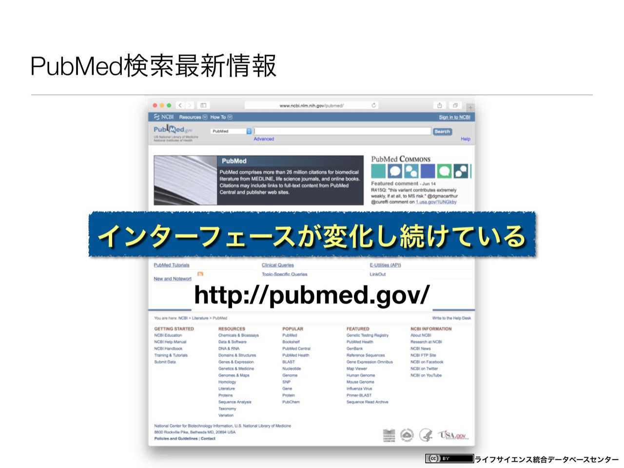 images/AJACS60_yamamoto_005.jpg