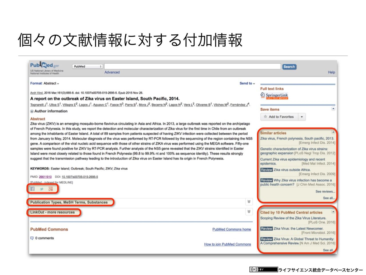 images/AJACS60_yamamoto_012.jpg