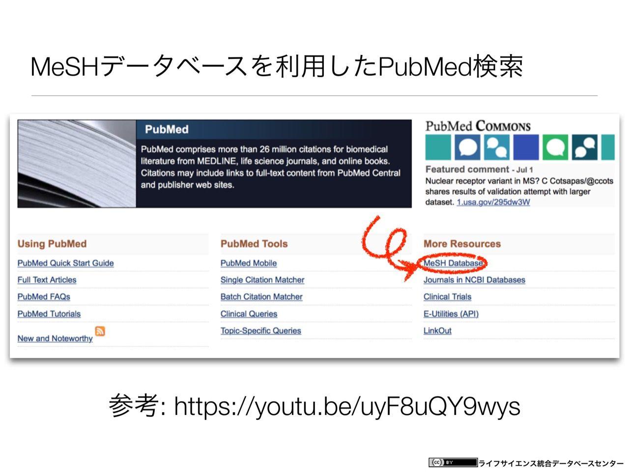images/AJACS60_yamamoto_018.jpg