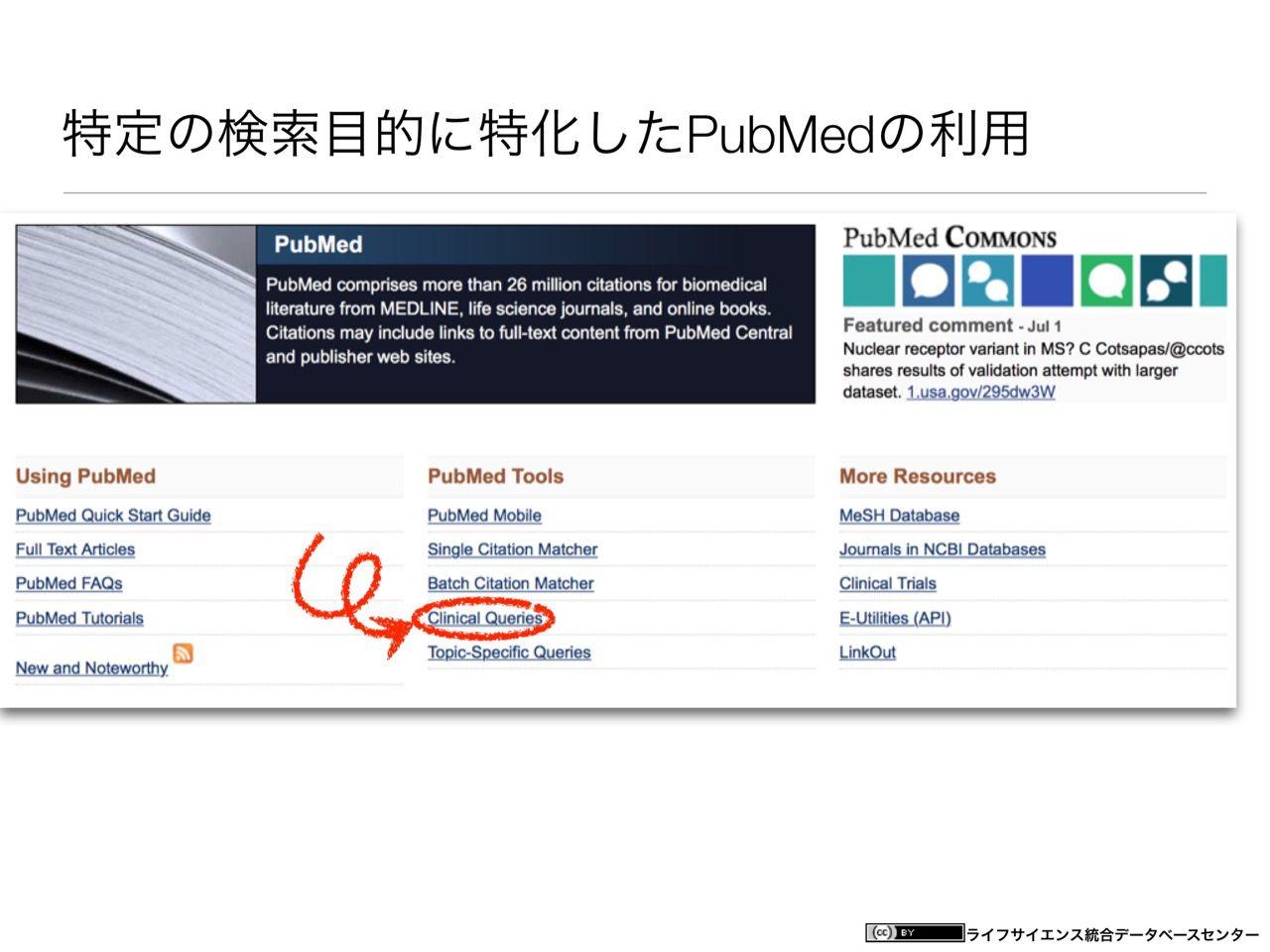 images/AJACS60_yamamoto_023.jpg