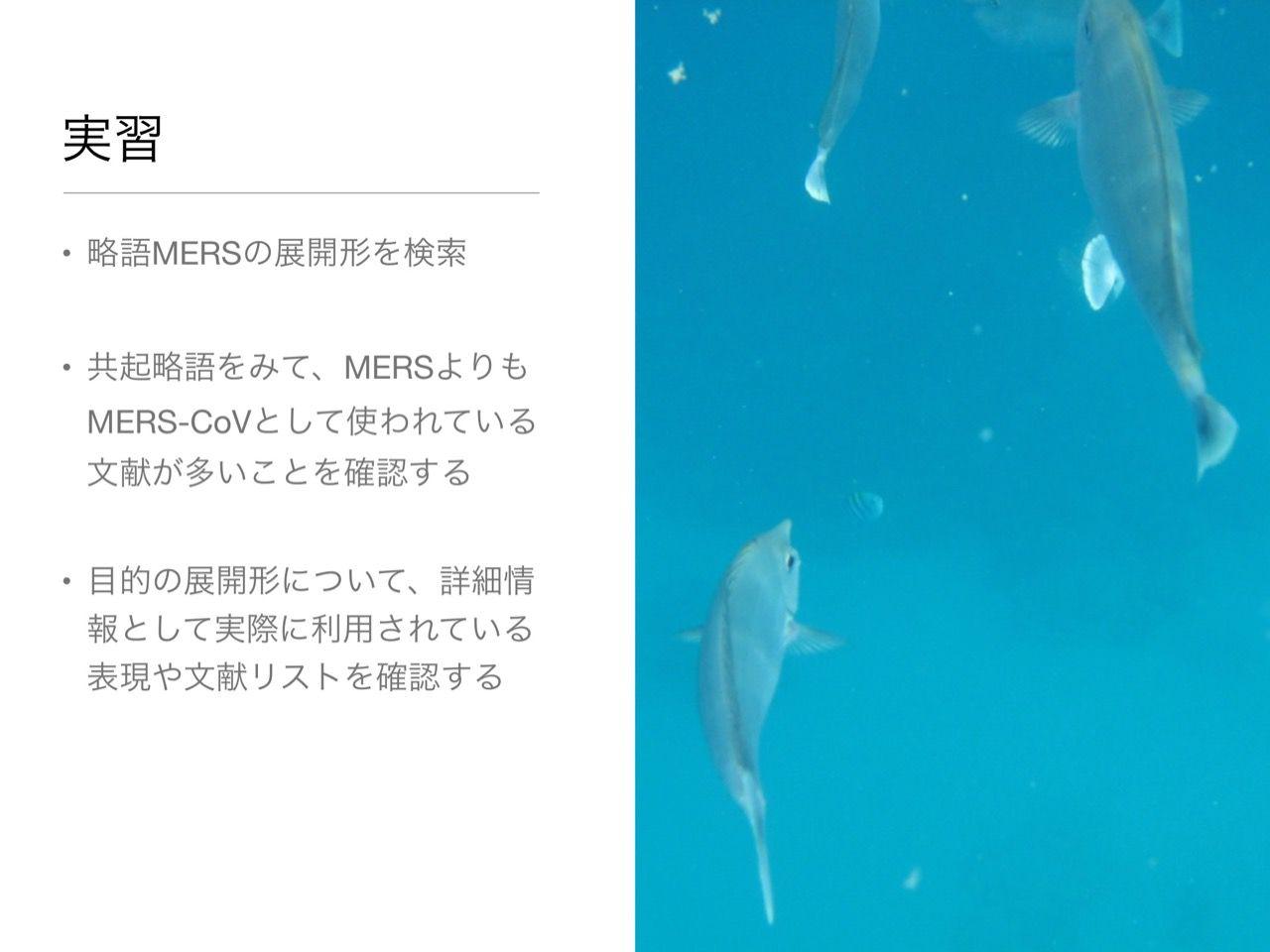 images/AJACS60_yamamoto_047.jpg