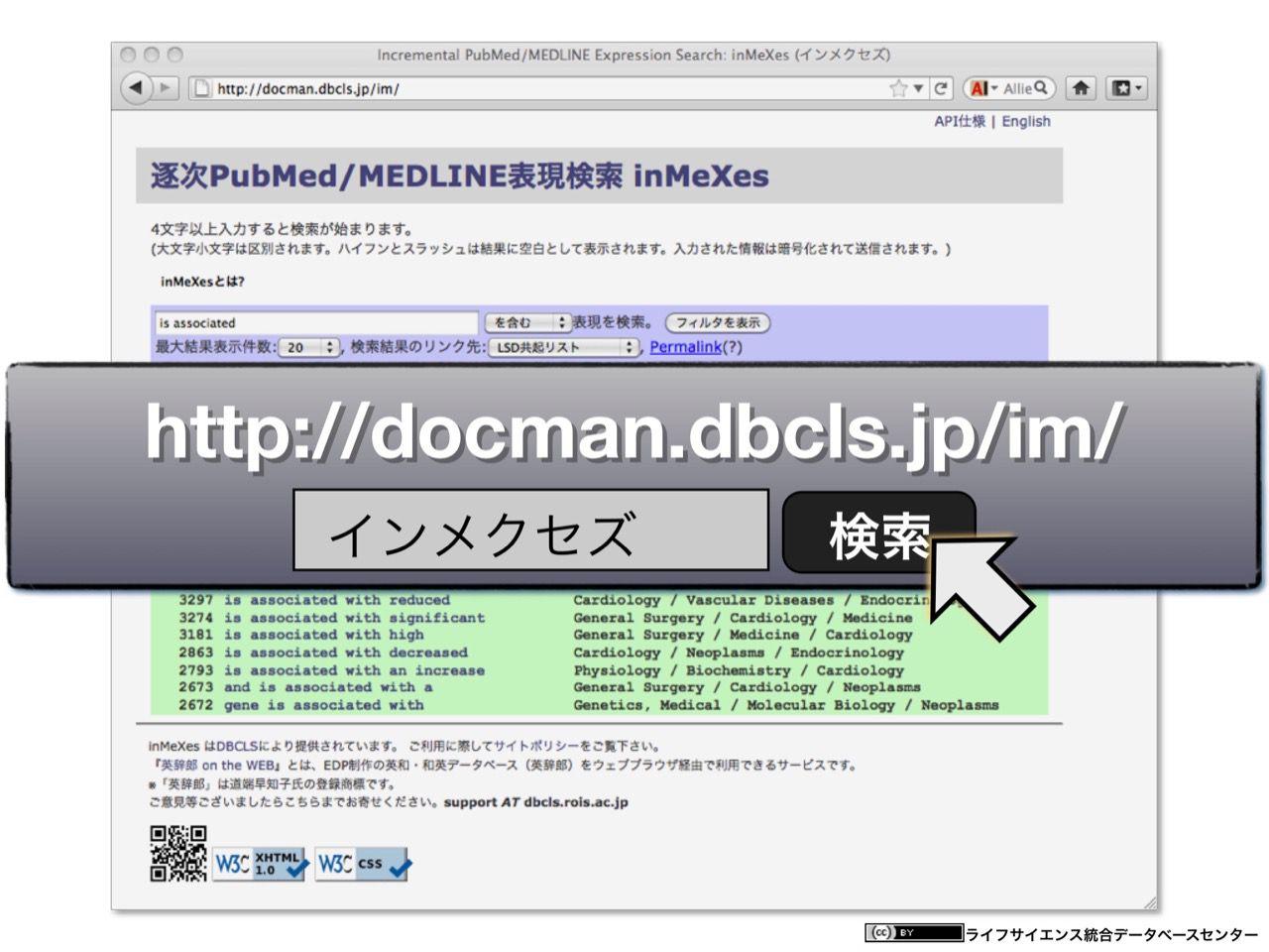 images/AJACS60_yamamoto_055.jpg