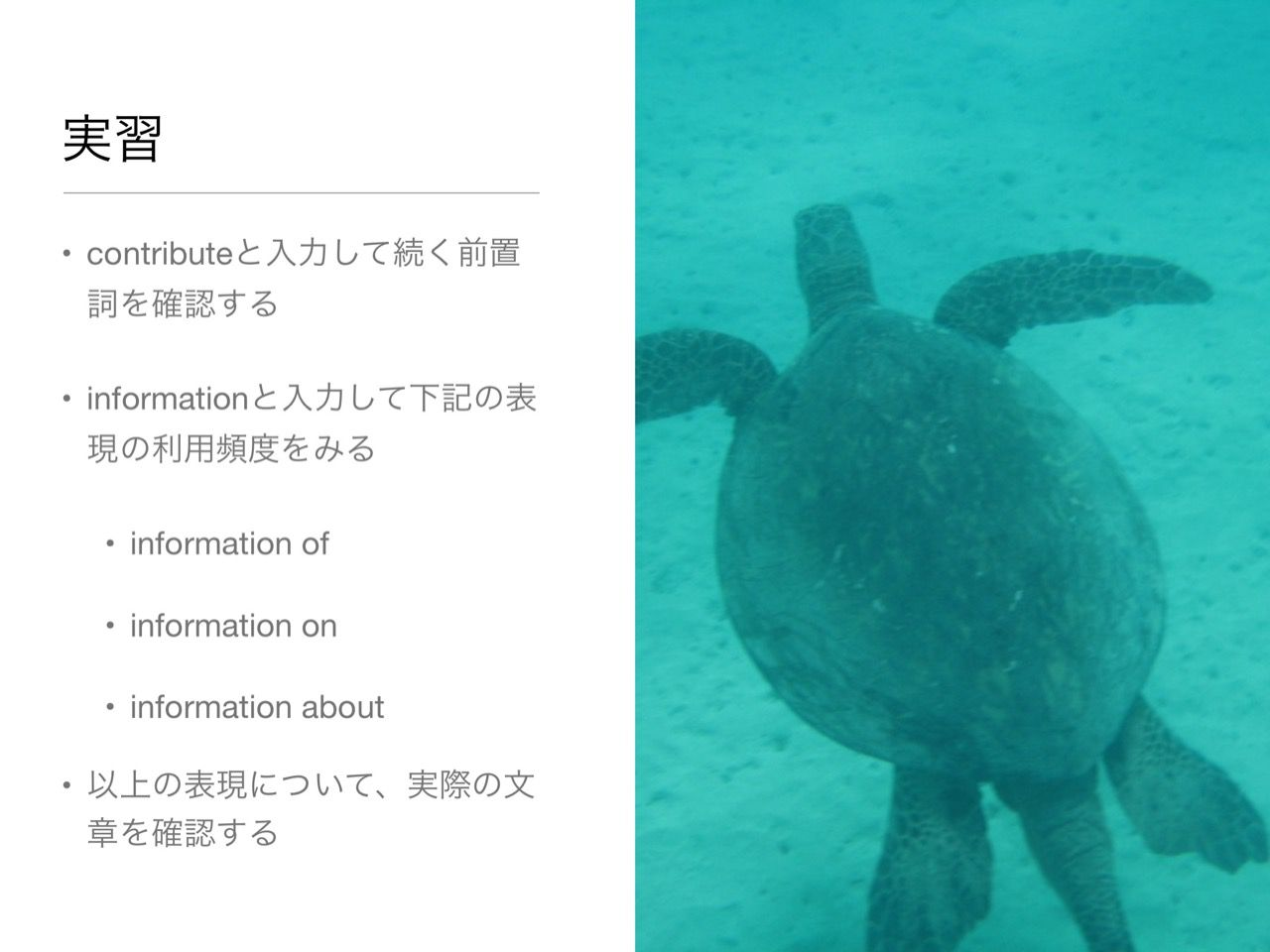 images/AJACS60_yamamoto_057.jpg