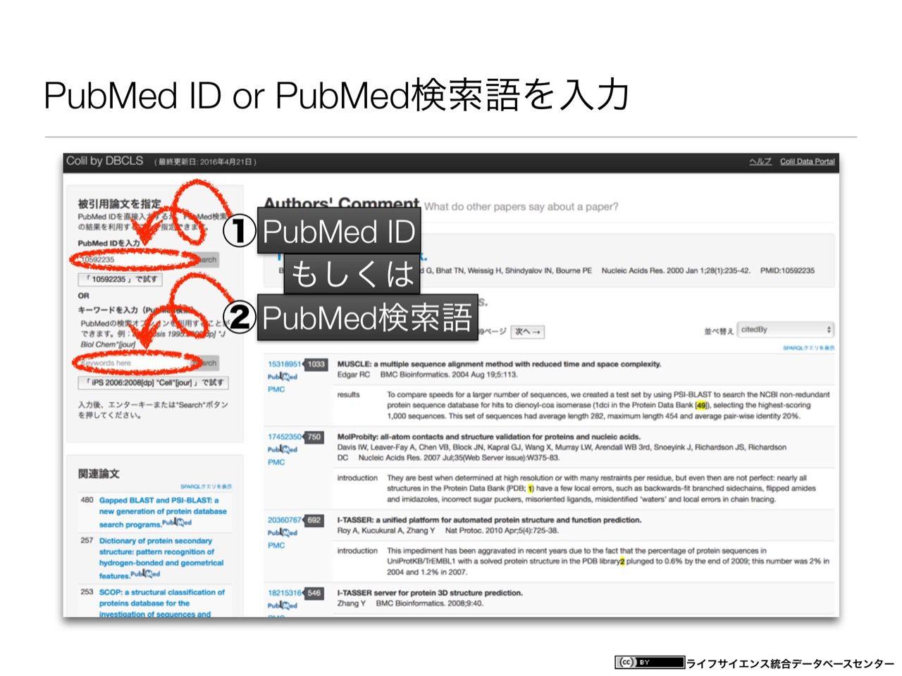 images/AJACS60_yamamoto_061.jpg