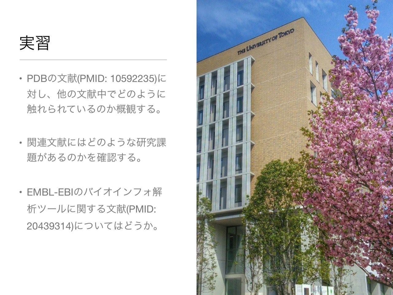 images/AJACS60_yamamoto_067.jpg