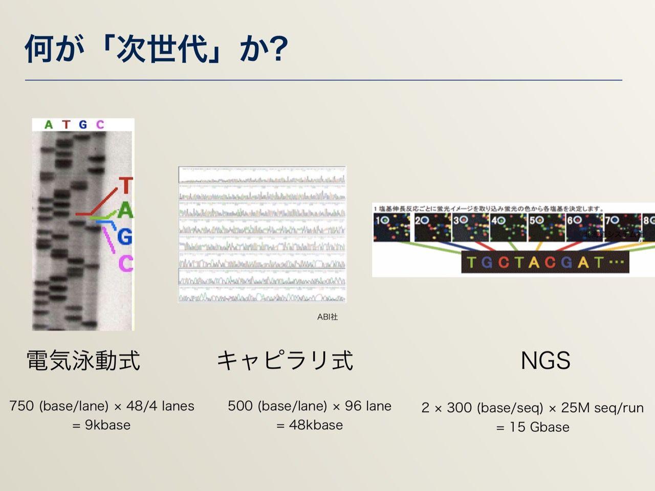 images/AJACS64_03_nakazato_004.jpg