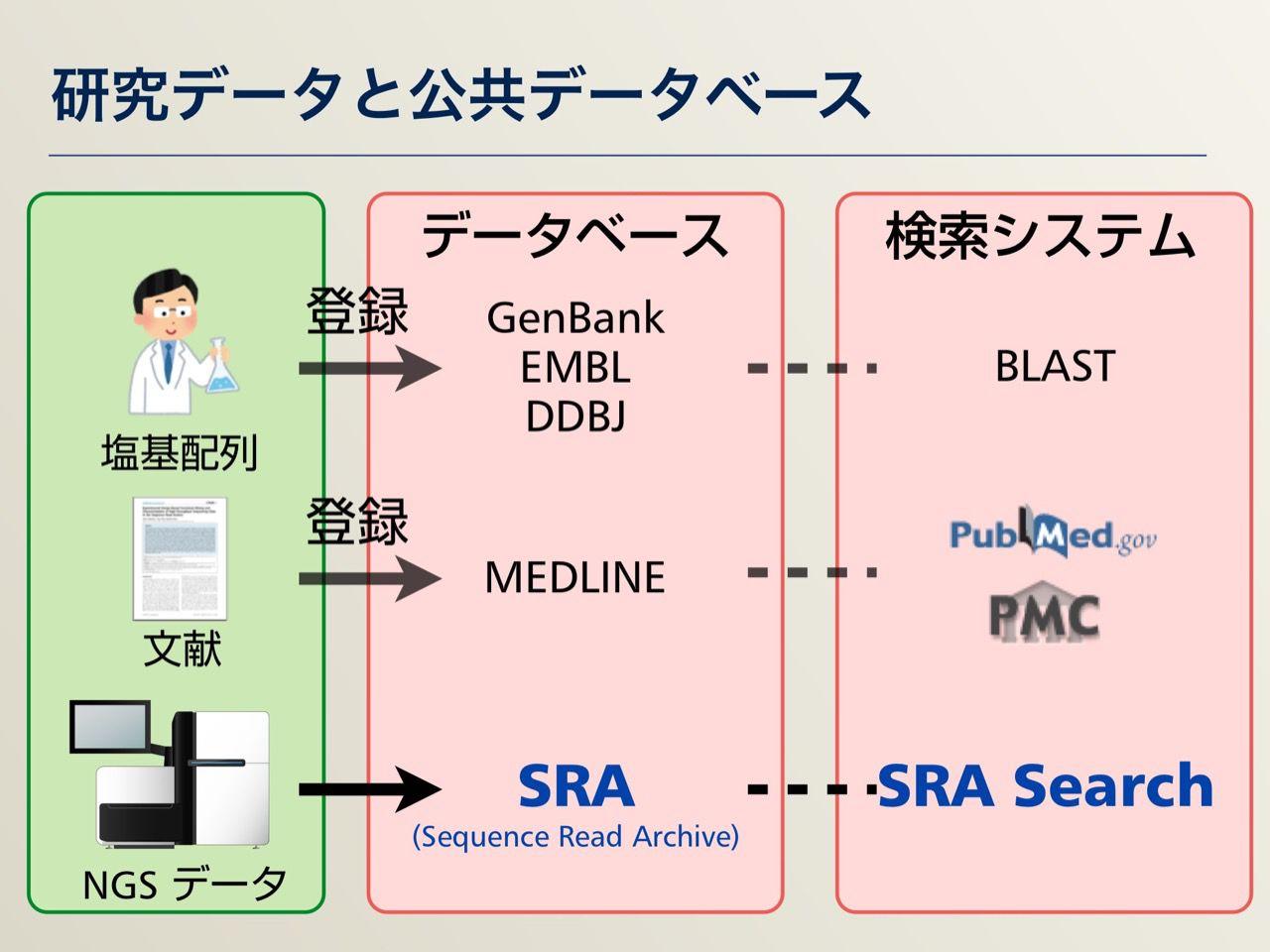 images/AJACS64_03_nakazato_009.jpg