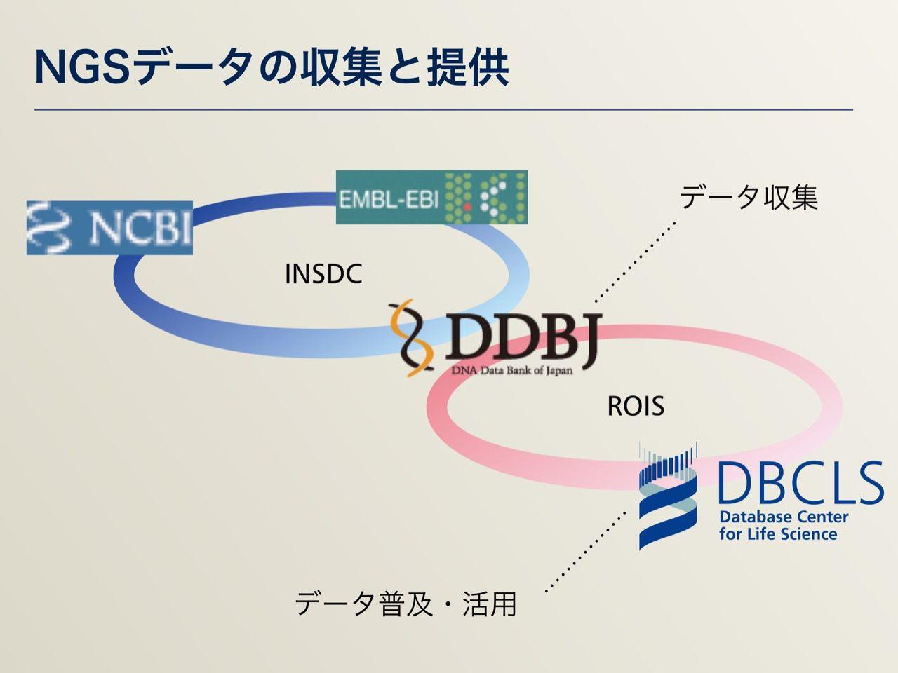 images/AJACS64_03_nakazato_011.jpg