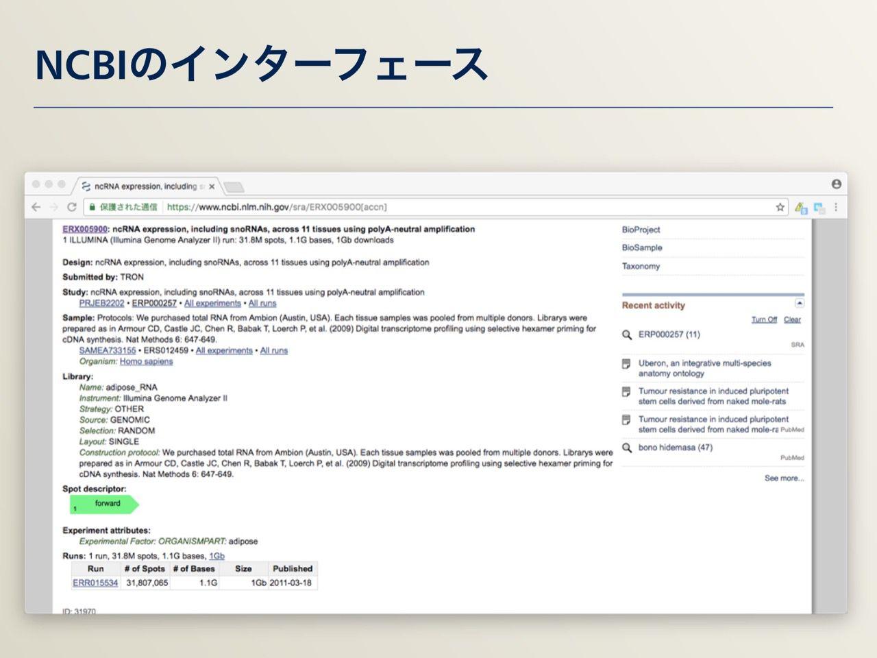 images/AJACS64_03_nakazato_016.jpg
