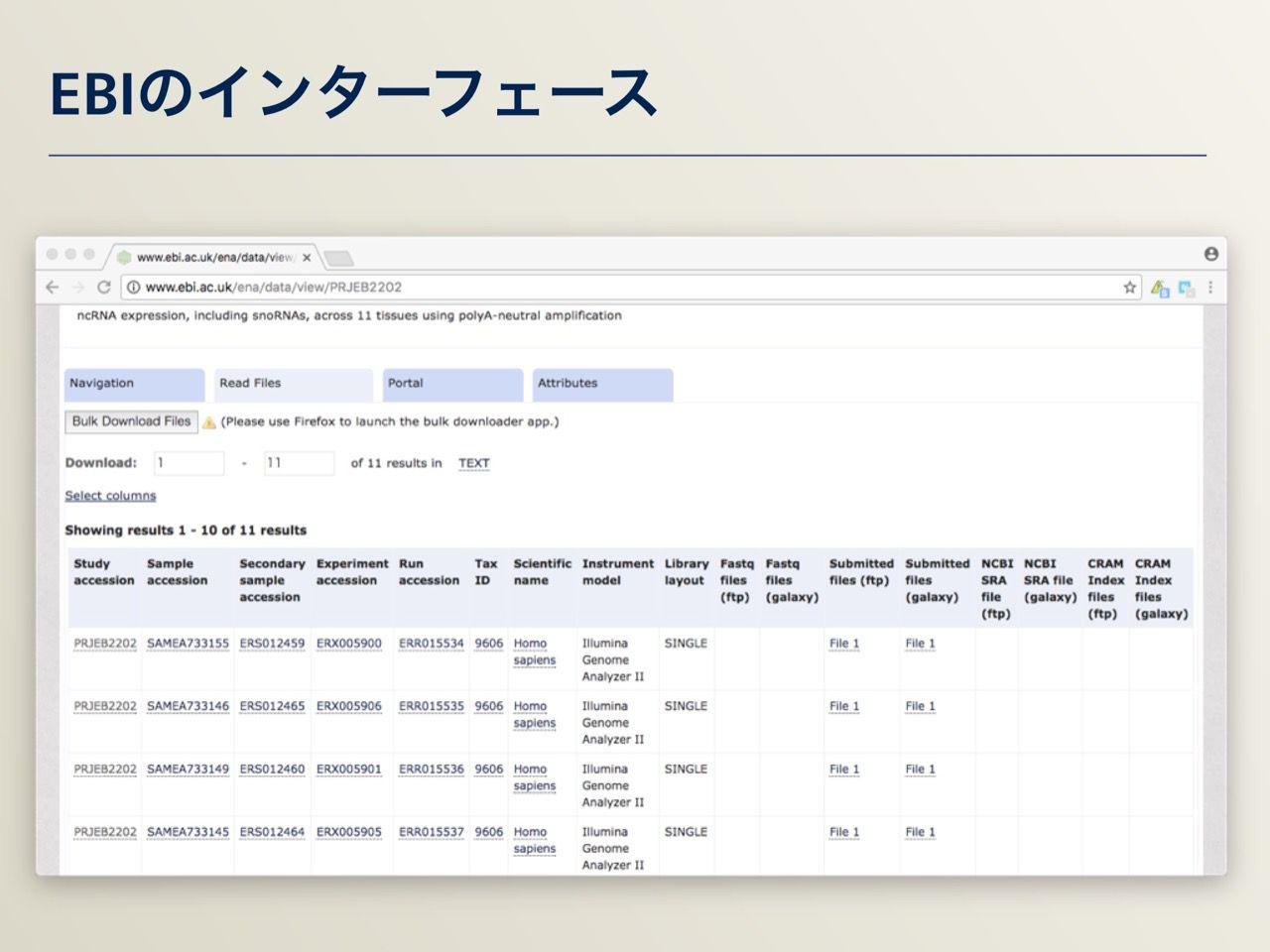 images/AJACS64_03_nakazato_017.jpg