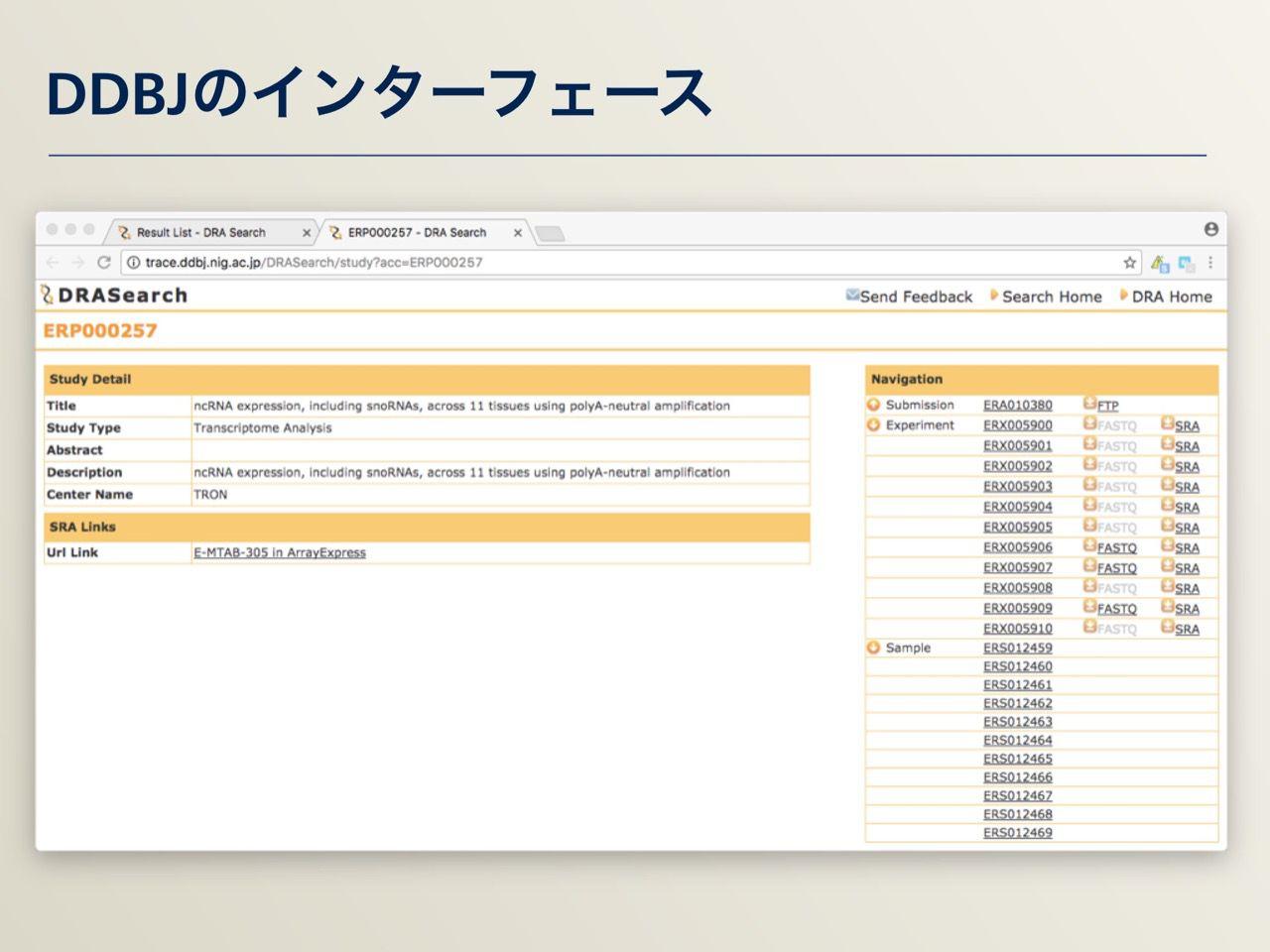images/AJACS64_03_nakazato_018.jpg