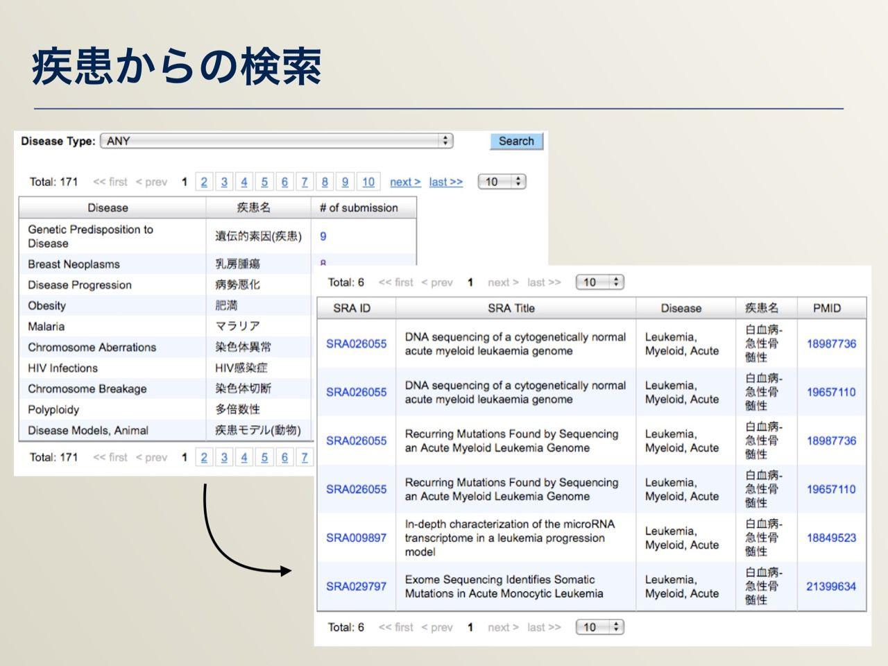 images/AJACS64_03_nakazato_033.jpg