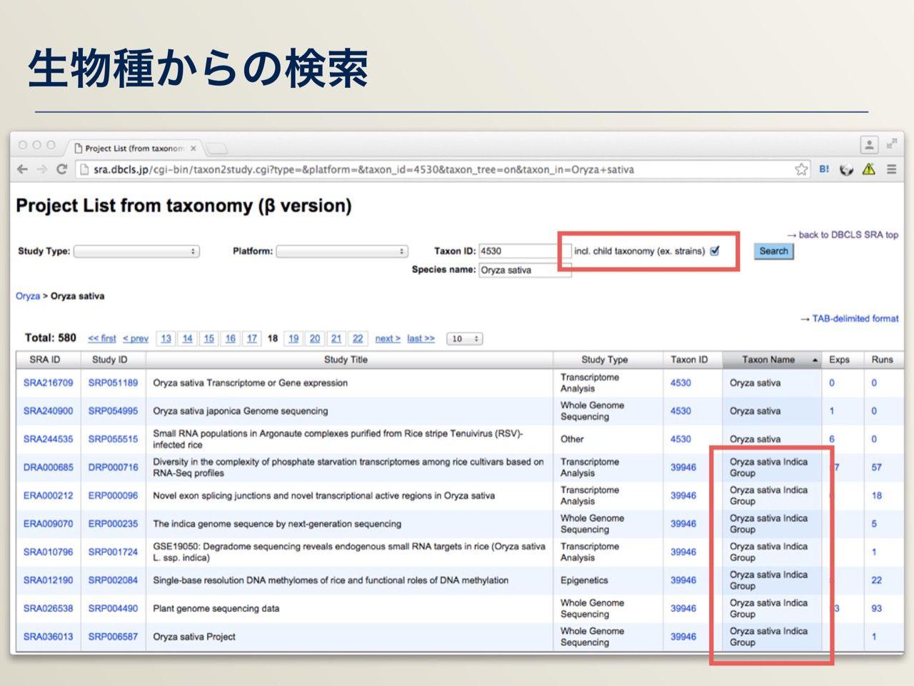 images/AJACS64_03_nakazato_034.jpg