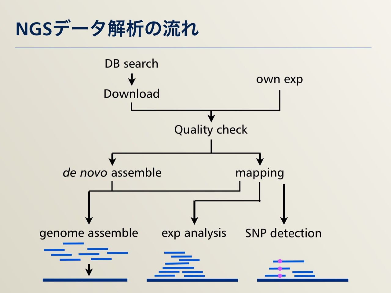 images/AJACS64_03_nakazato_035.jpg