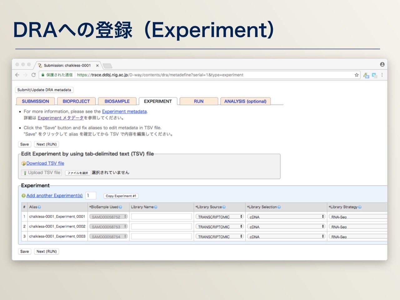 images/AJACS64_03_nakazato_041.jpg