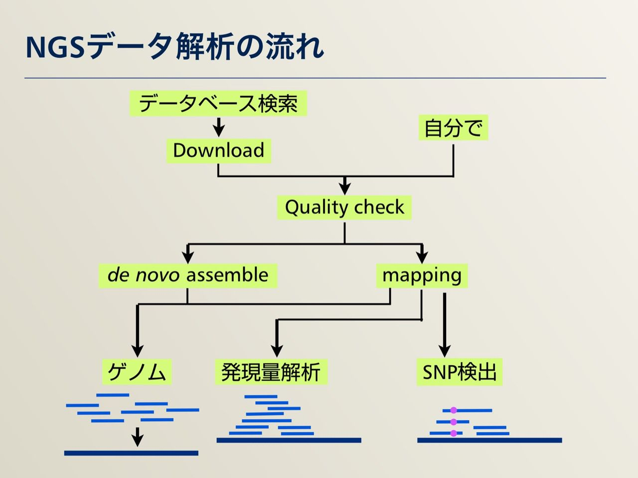 images/AJACS64_04_nakazato_003.jpg
