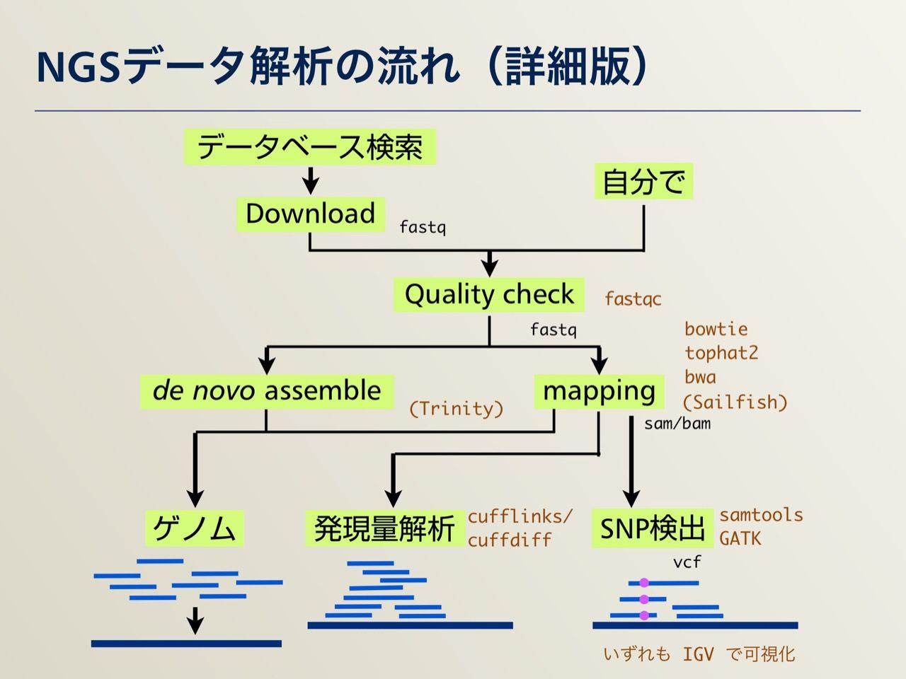 images/AJACS64_04_nakazato_004.jpg