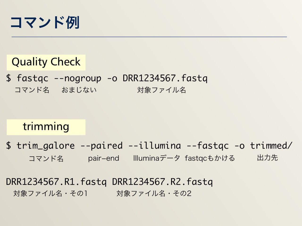 images/AJACS64_04_nakazato_016.jpg
