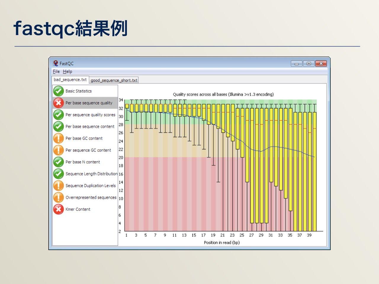 images/AJACS64_04_nakazato_017.jpg