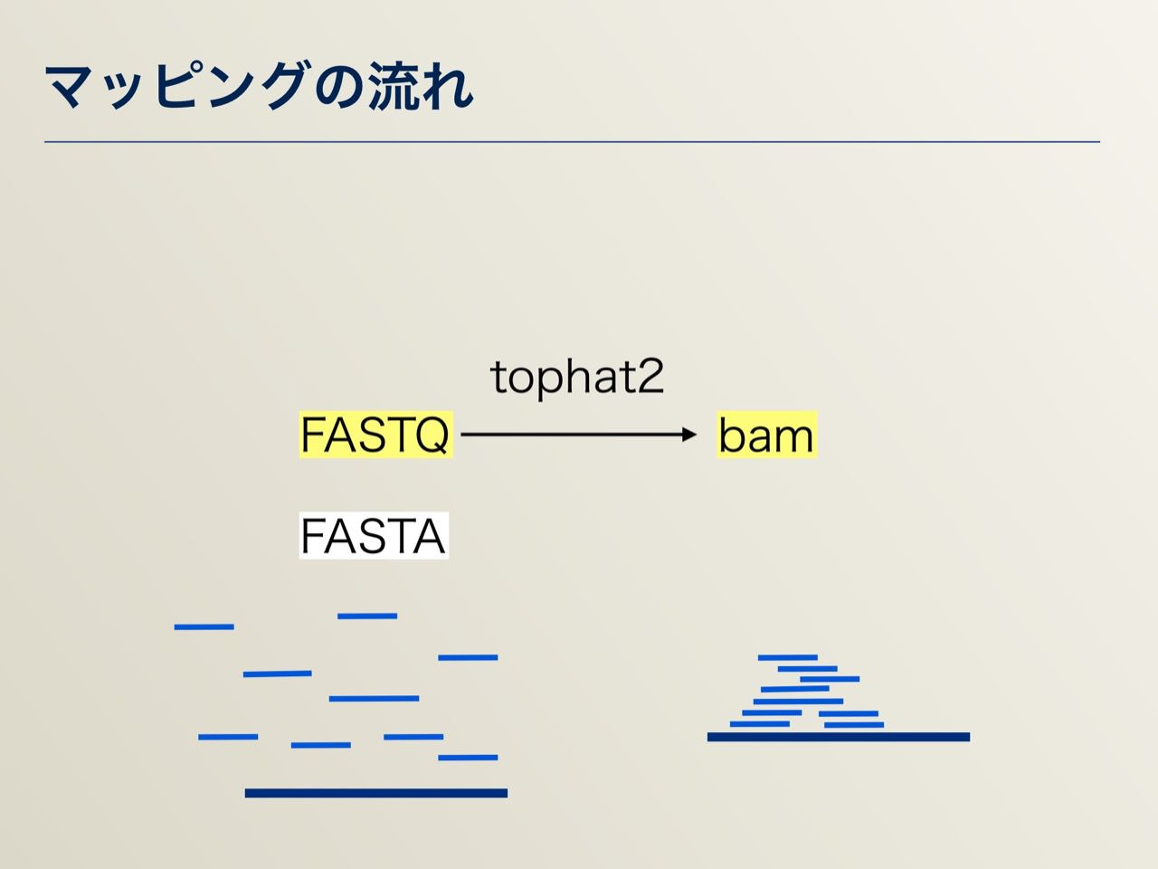 images/AJACS64_04_nakazato_019.jpg