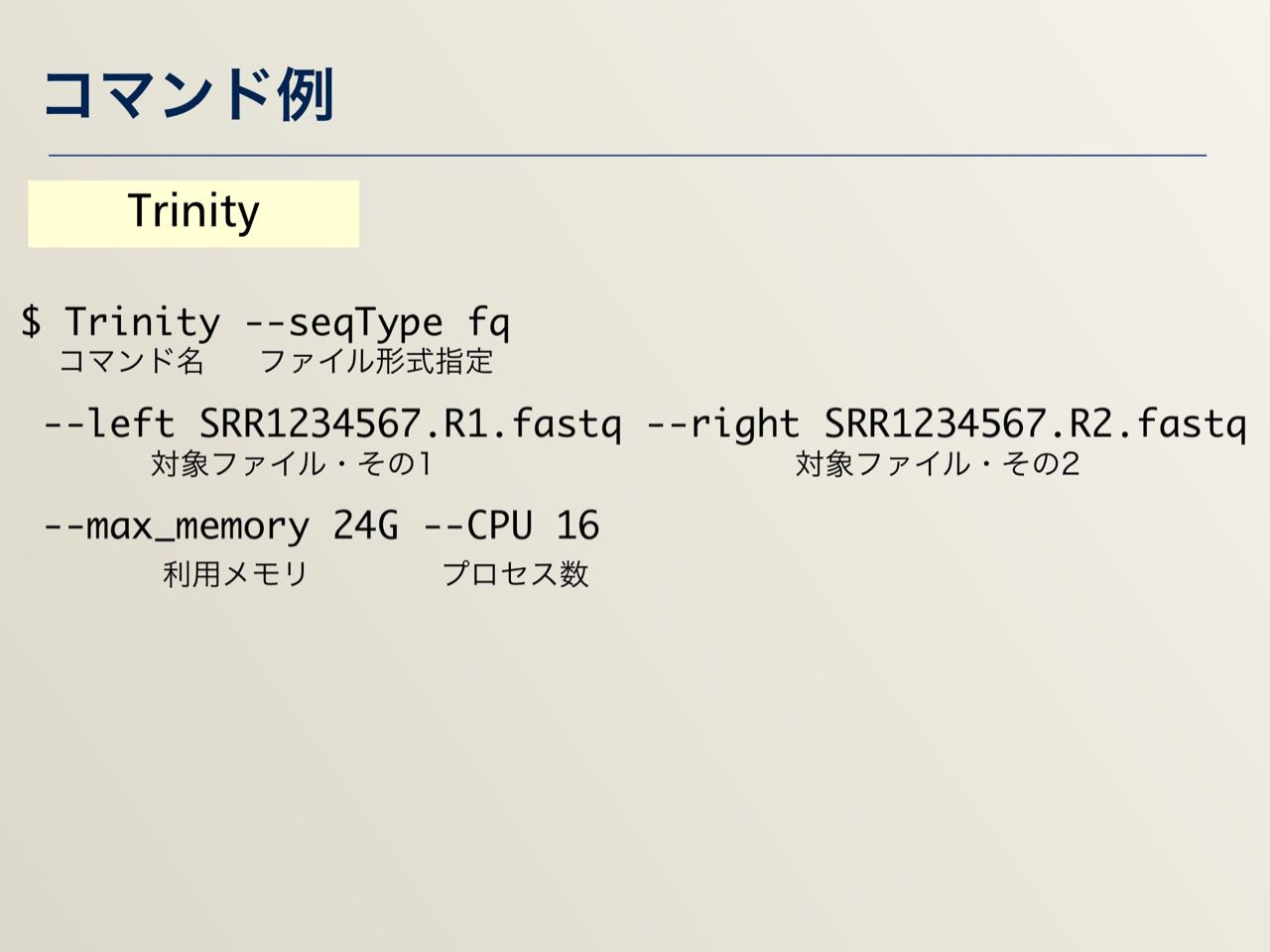 images/AJACS64_04_nakazato_025.jpg