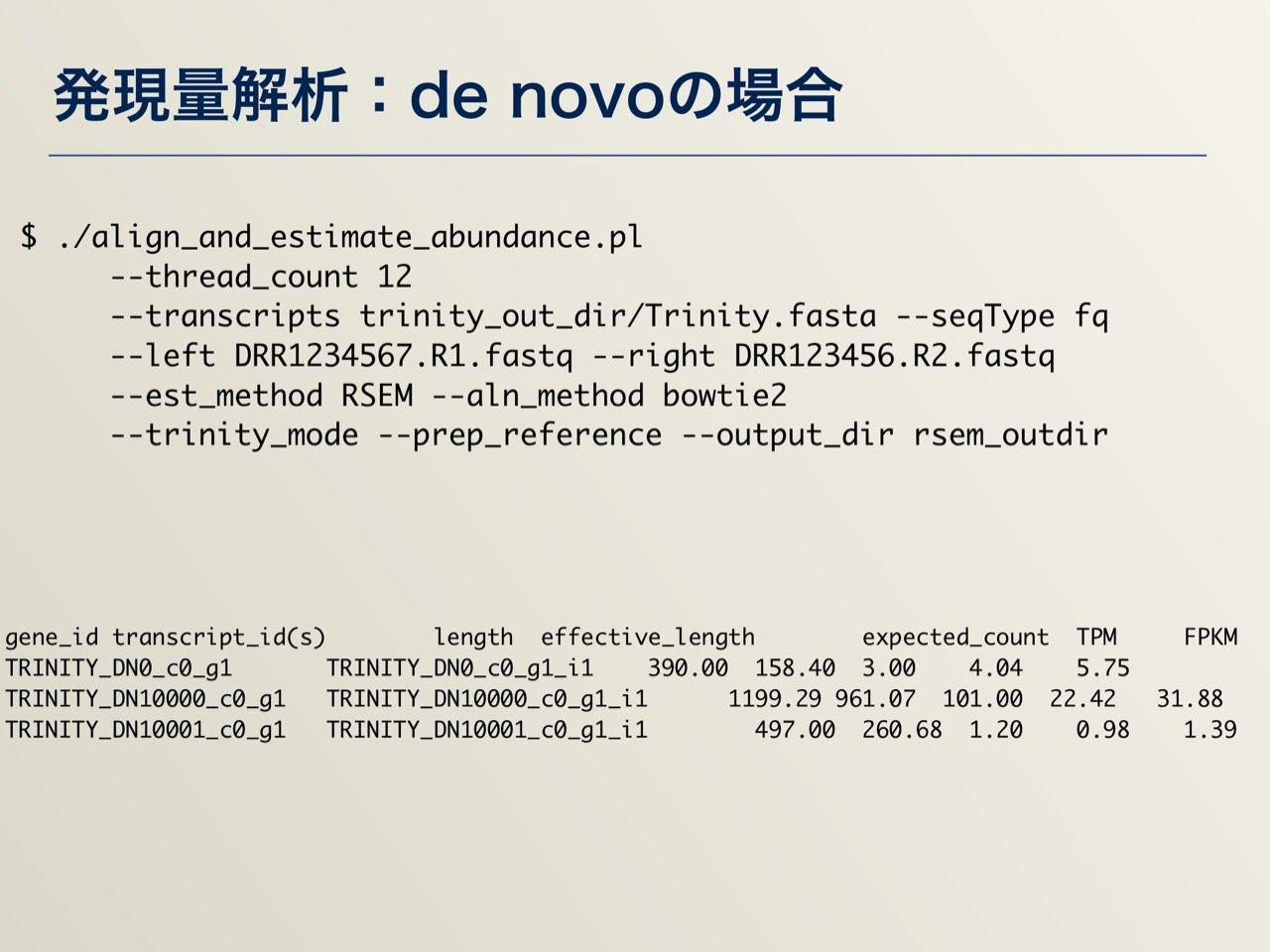 images/AJACS64_04_nakazato_028.jpg