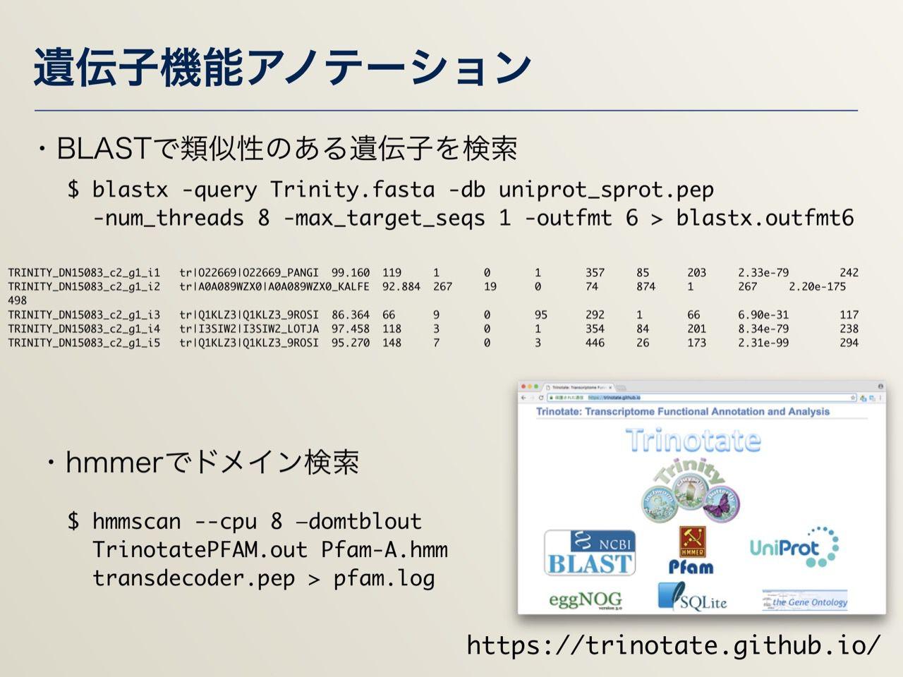 images/AJACS64_04_nakazato_029.jpg