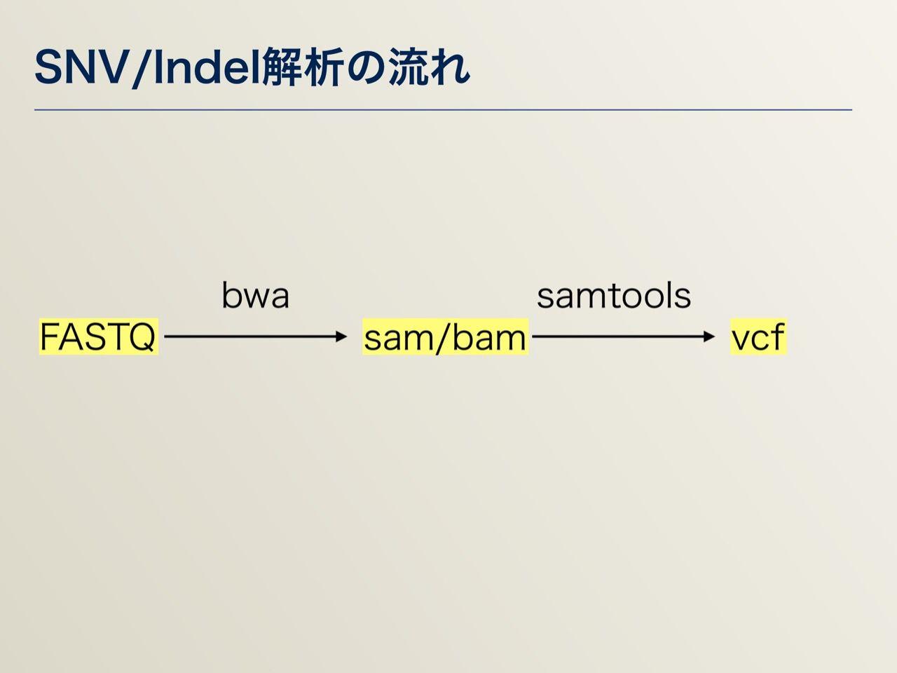 images/AJACS64_04_nakazato_031.jpg