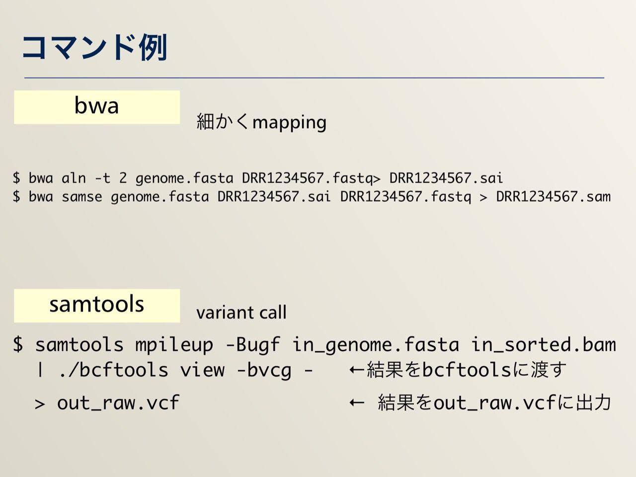 images/AJACS64_04_nakazato_032.jpg