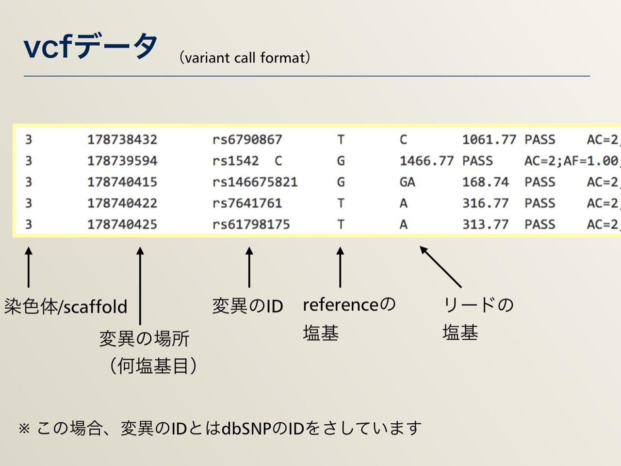 images/AJACS64_04_nakazato_033.jpg