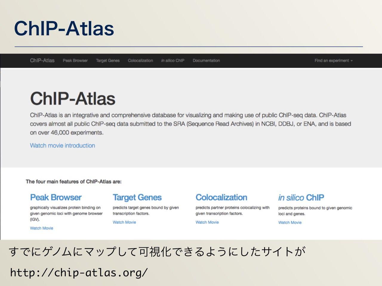 images/AJACS64_04_nakazato_035.jpg