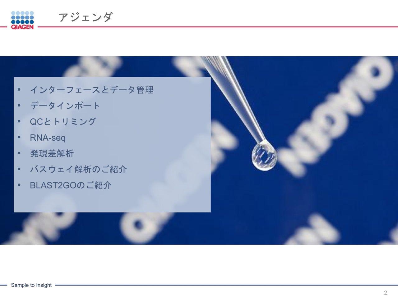 images/AJACSa2_miyamoto_002.jpg