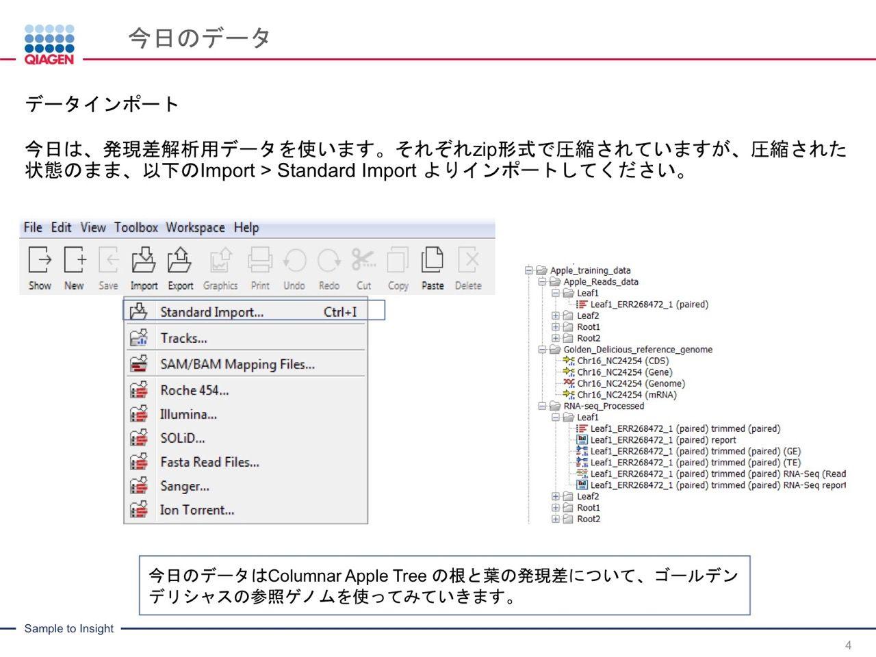 images/AJACSa2_miyamoto_004.jpg