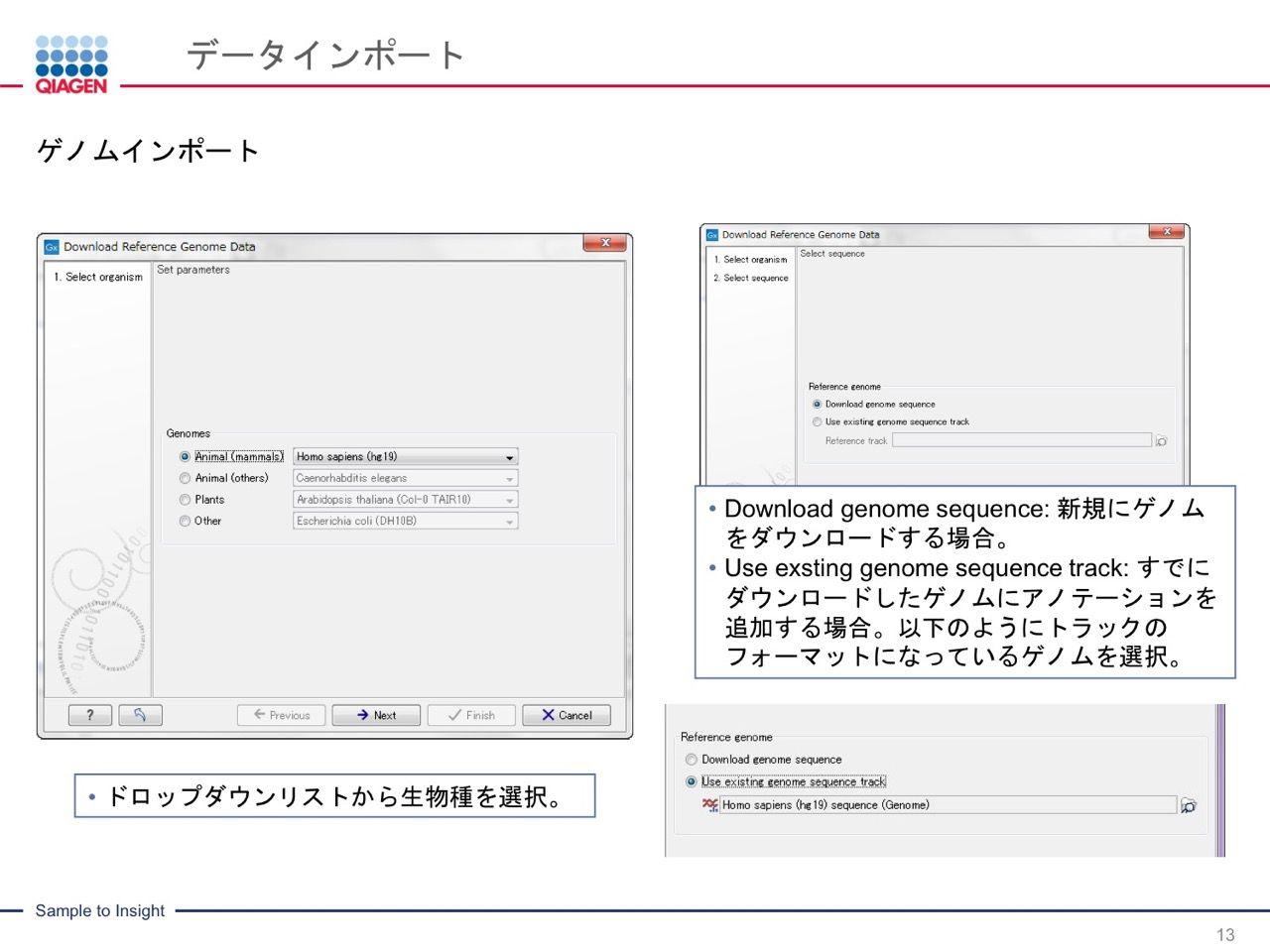 images/AJACSa2_miyamoto_013.jpg
