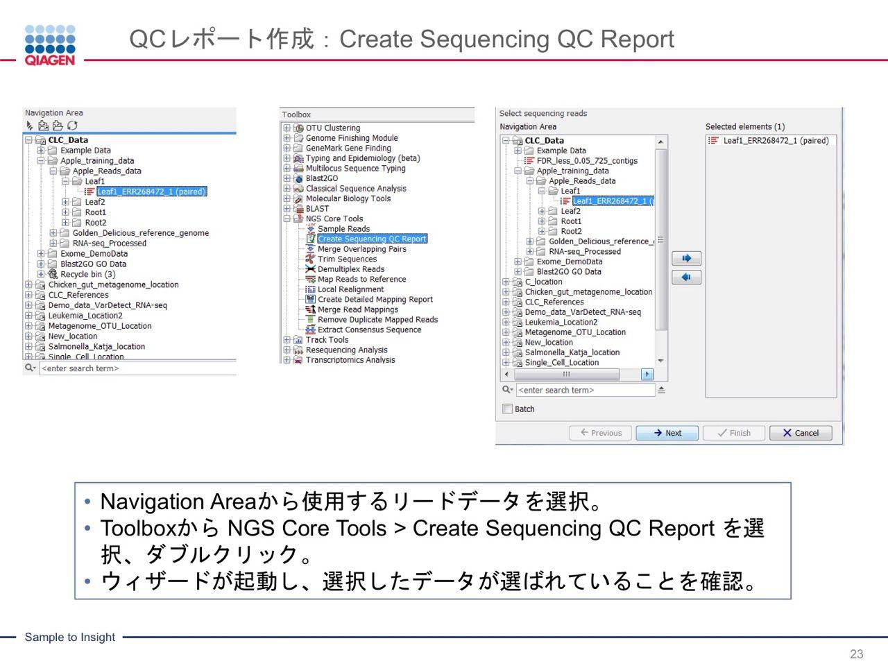images/AJACSa2_miyamoto_023.jpg