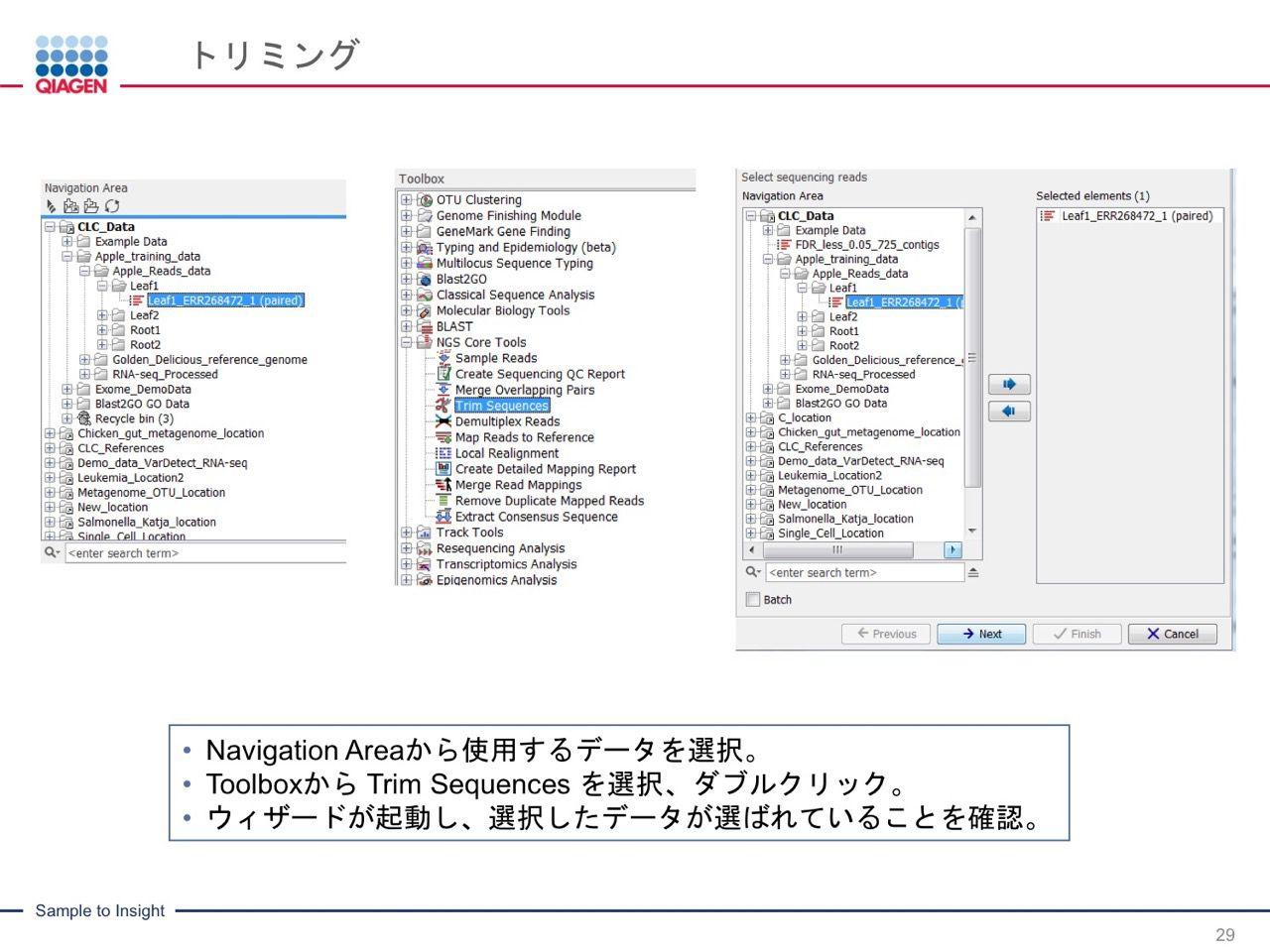 images/AJACSa2_miyamoto_029.jpg