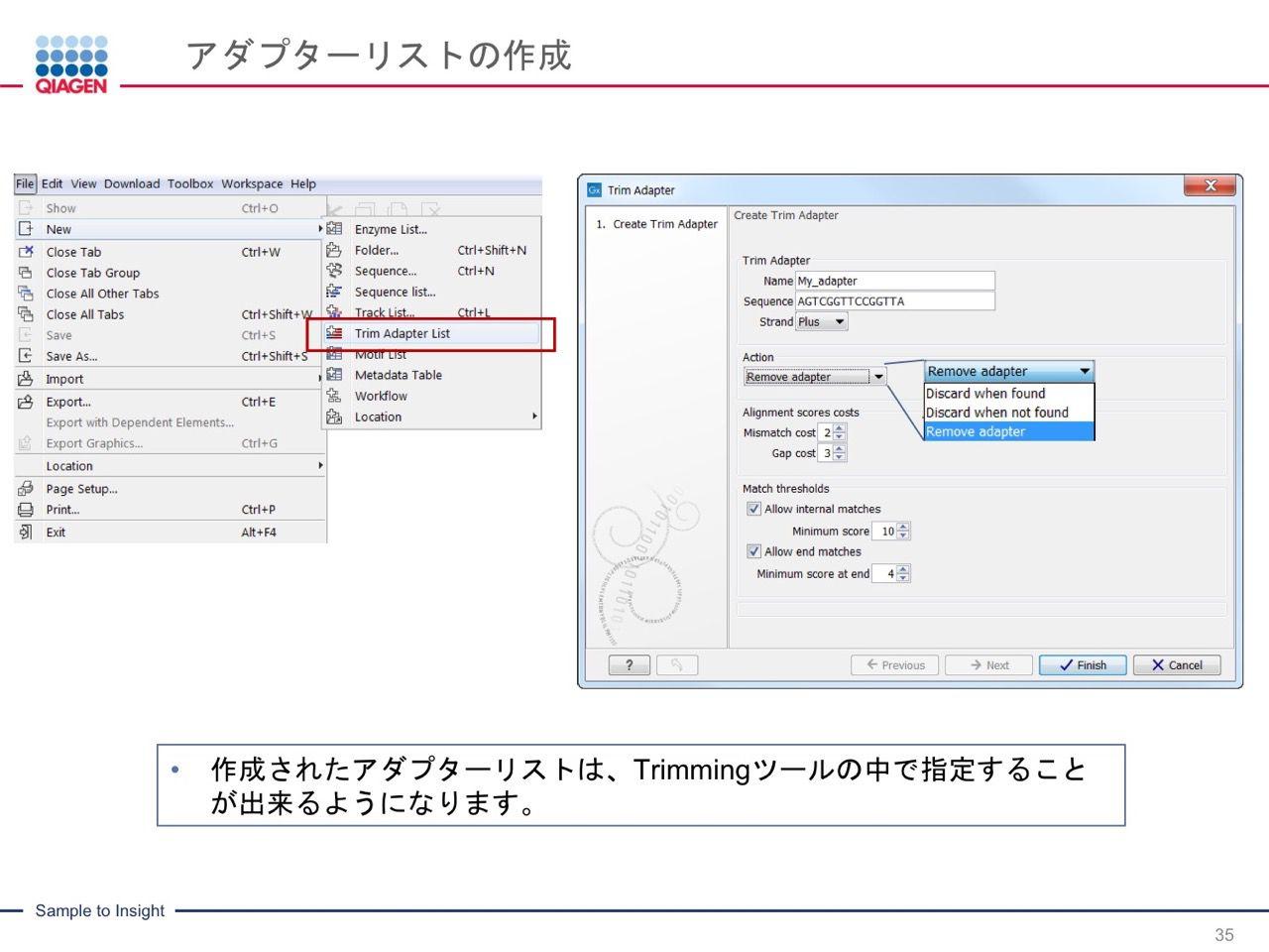 images/AJACSa2_miyamoto_035.jpg