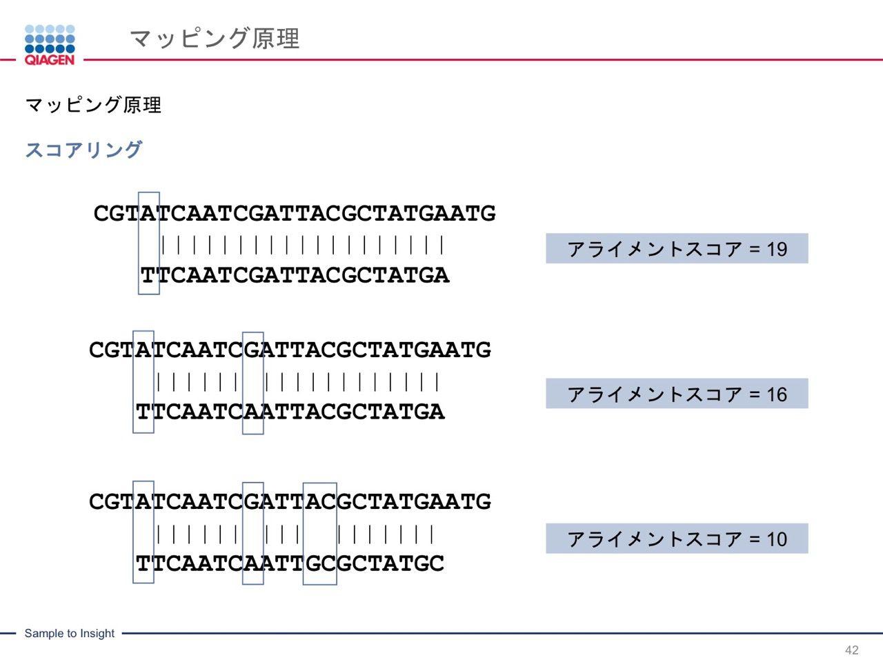 images/AJACSa2_miyamoto_042.jpg
