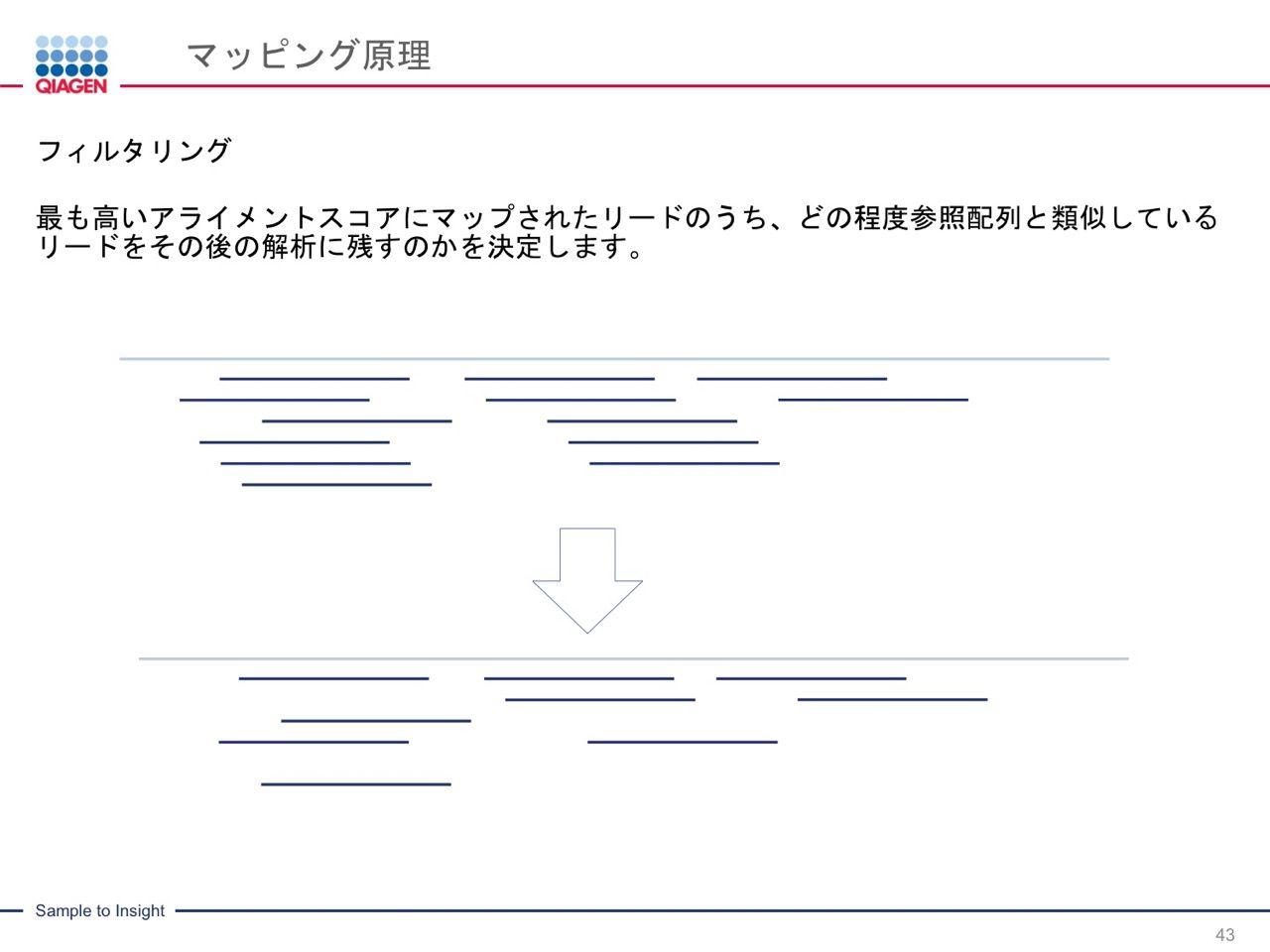 images/AJACSa2_miyamoto_043.jpg