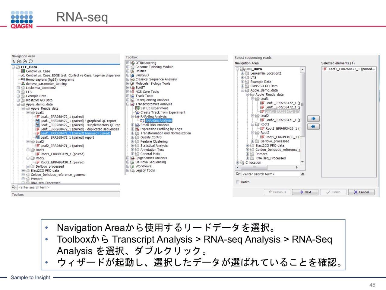 images/AJACSa2_miyamoto_046.jpg