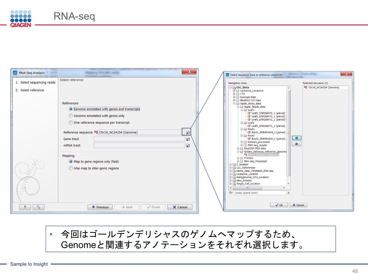 images/AJACSa2_miyamoto_048.jpg