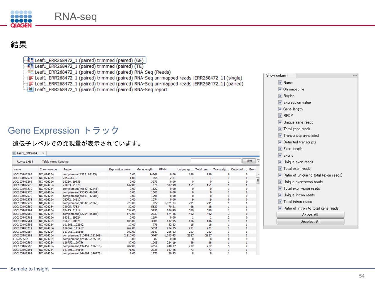 images/AJACSa2_miyamoto_054.jpg