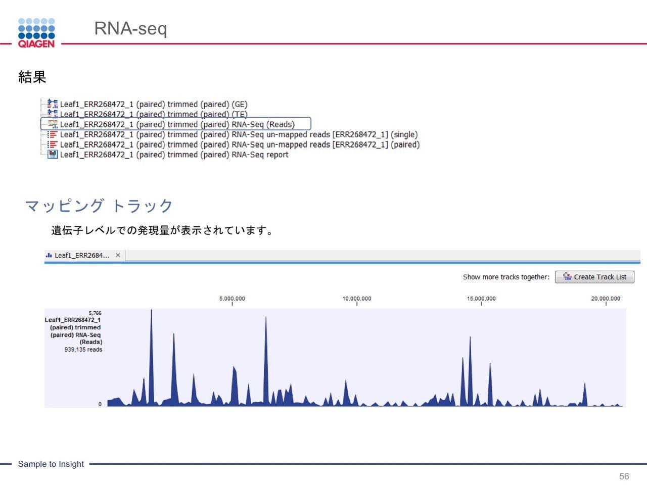 images/AJACSa2_miyamoto_056.jpg