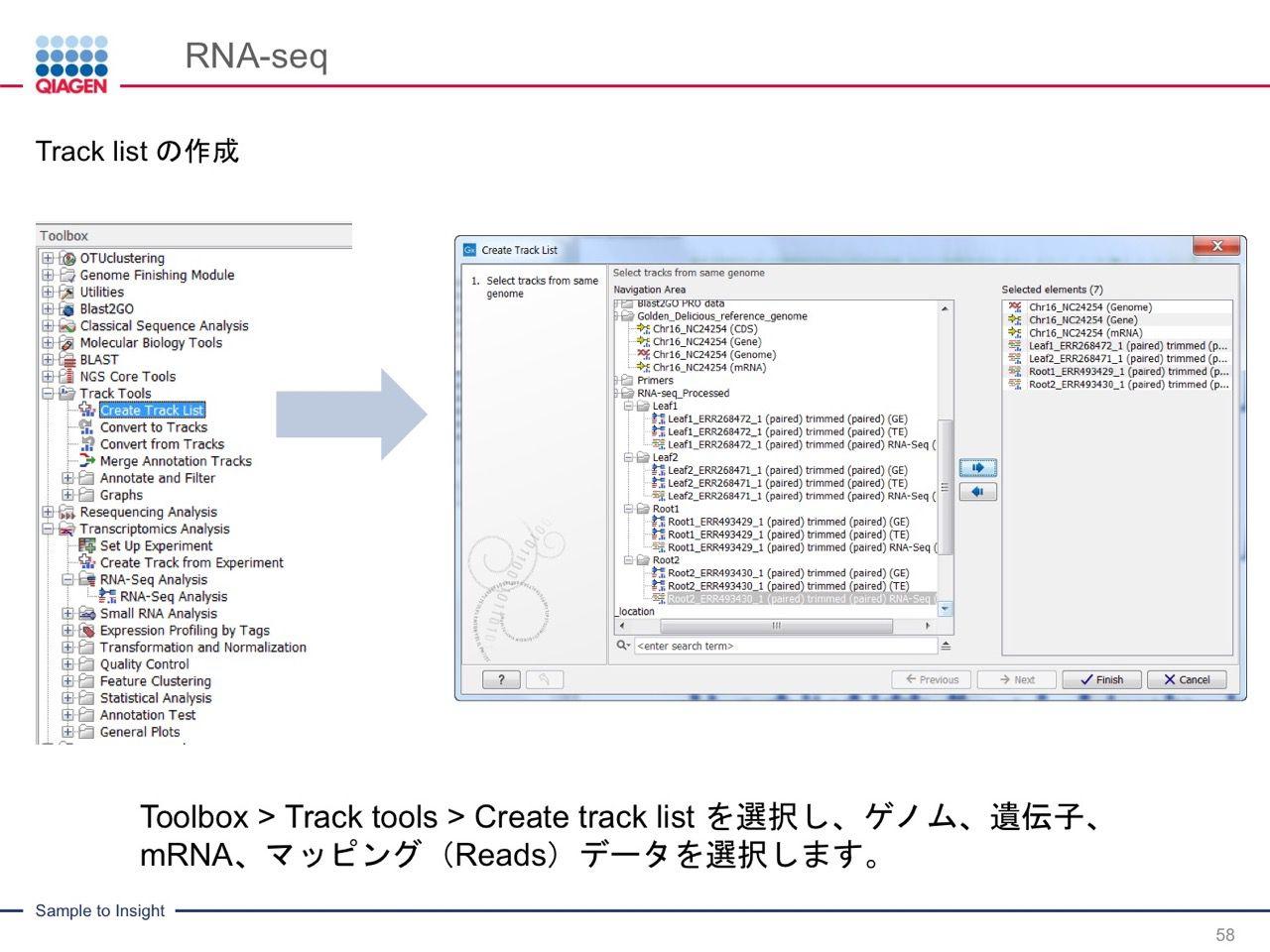 images/AJACSa2_miyamoto_058.jpg