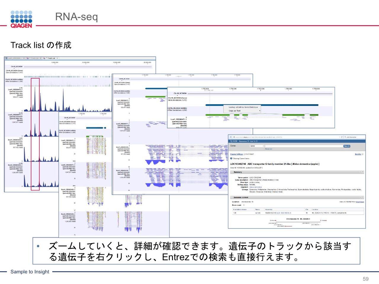 images/AJACSa2_miyamoto_059.jpg