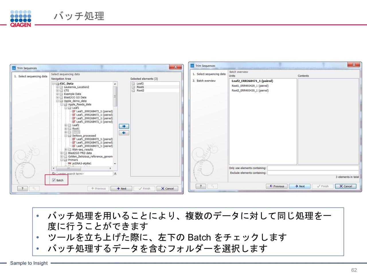 images/AJACSa2_miyamoto_062.jpg