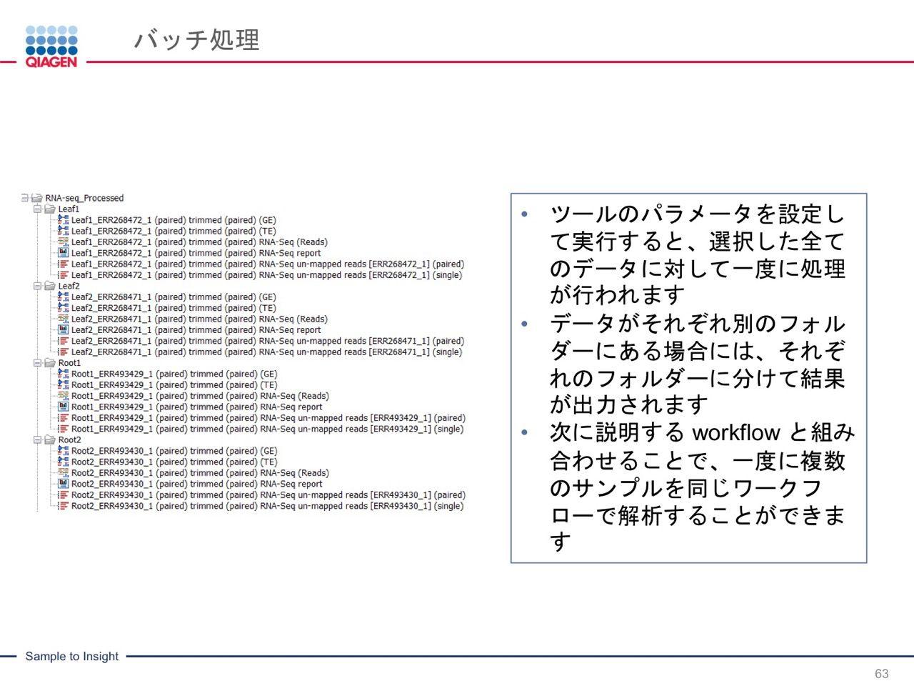 images/AJACSa2_miyamoto_063.jpg